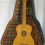 holl_guitar_cubozoa_ru20