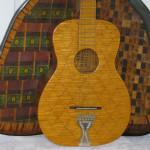 holl_guitar_cubozoa_ru22