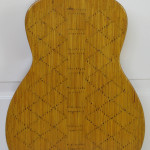 holl_guitar_cubozoa_ru24