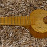holl_guitar_cubozoa_ru29