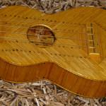 holl_guitar_cubozoa_ru31