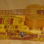 holl_guitar_cubozoa_ru37