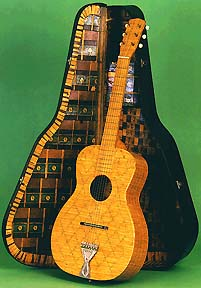 jack-hall-matchstick-guitar-and-case